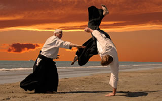 VUCA-AIKIDO: Six stances for new sovereignty in business (Handling VUCA V)