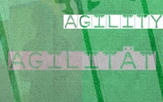 Sowohl agil als auch lean – beidhändig agieren ohne janusköpfig zu werden!