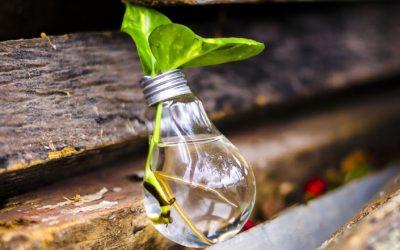 Bildung – Innovation – Gründung